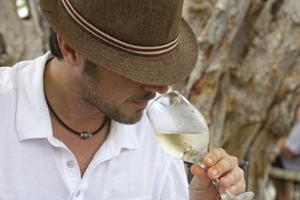 decouverte et degustation vin conciergerie privée var provence