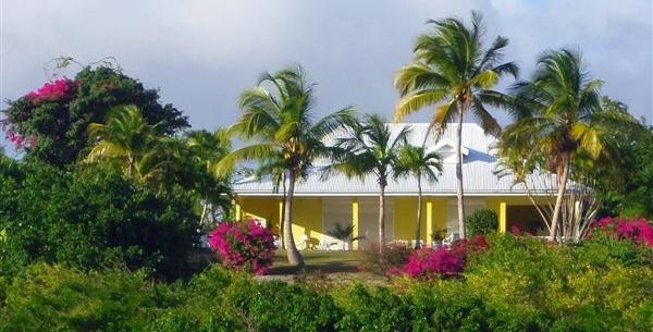 Jardin exotique avec piscine pour cette maison en vente for Jardin tropical guadeloupe